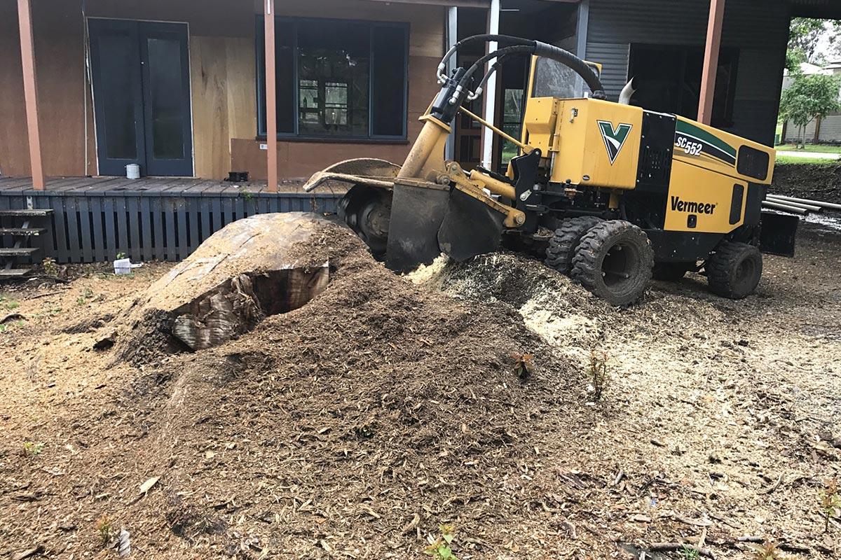 SC552 Stump Cutter in Brisbane